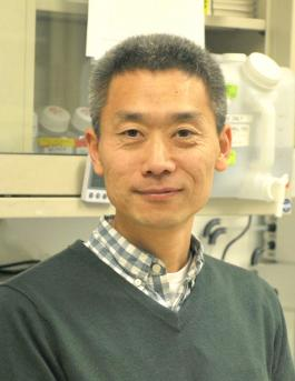 Photo of Joe Qi, PhD