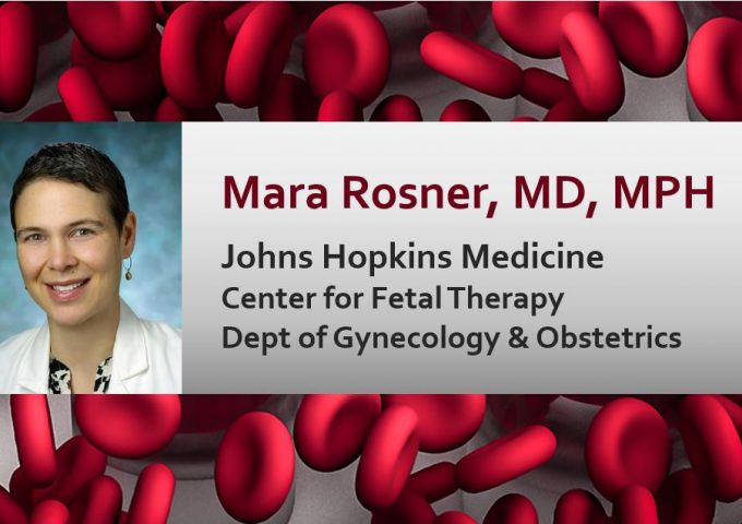 Mara Rosner, MD, MPH, Johns Hopkins Medicine, Center for Fetal Therapy, Department of Gynecology & Obstetrics